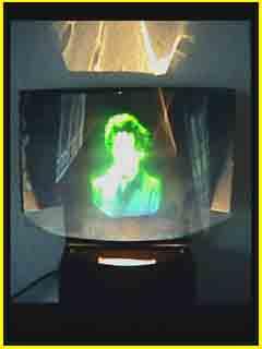 """Multiplex<sup ></sup>"" Hologram Display"