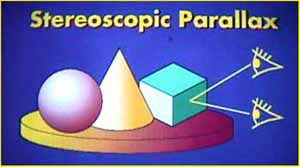 Stereoscopic parallax: how we see in 3D